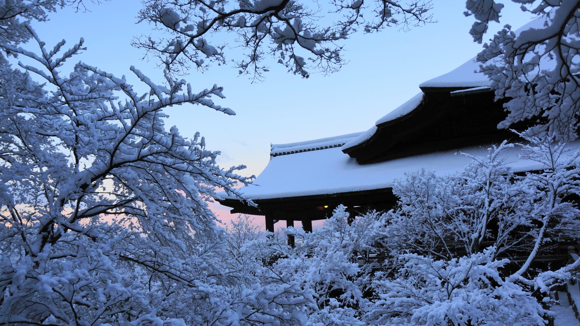 雪の花の間から見える白くそまった舞台