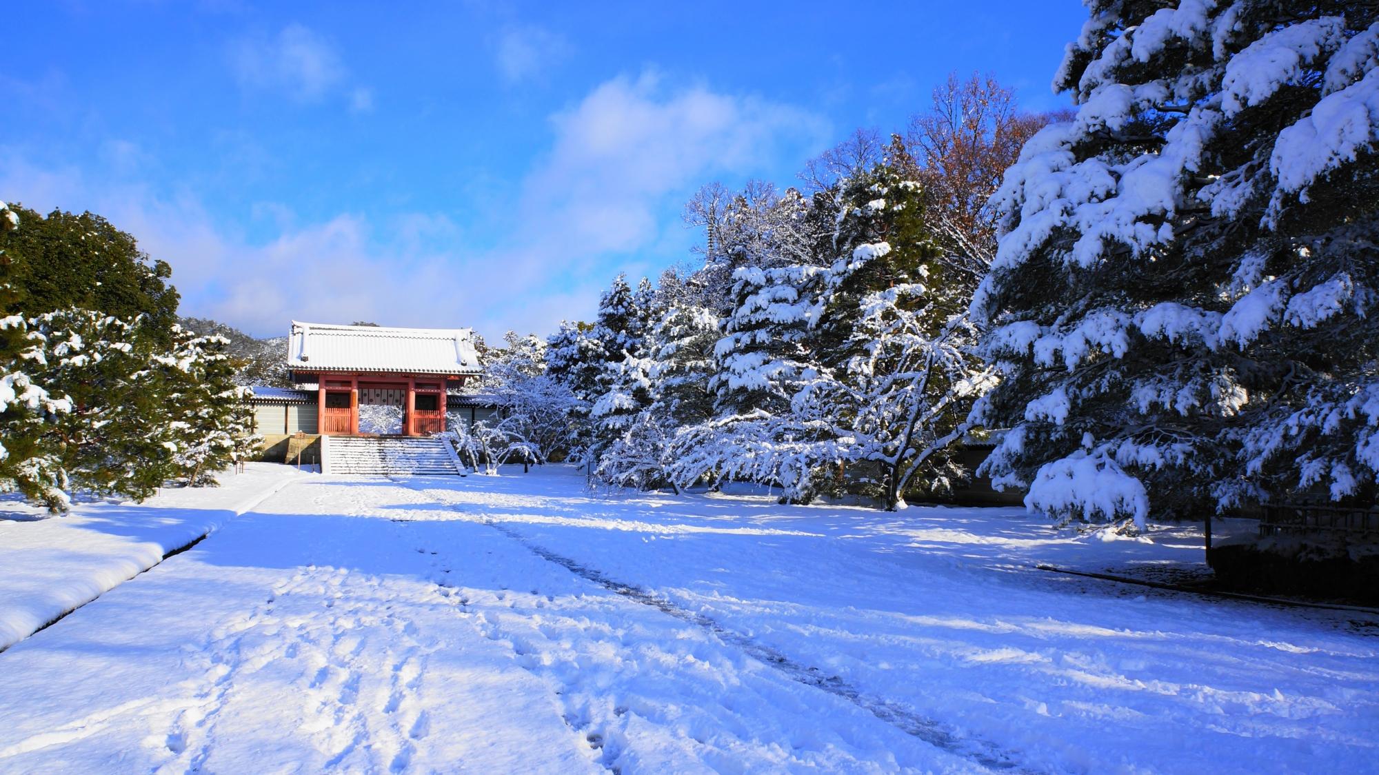 仁和寺の中門の雪景色