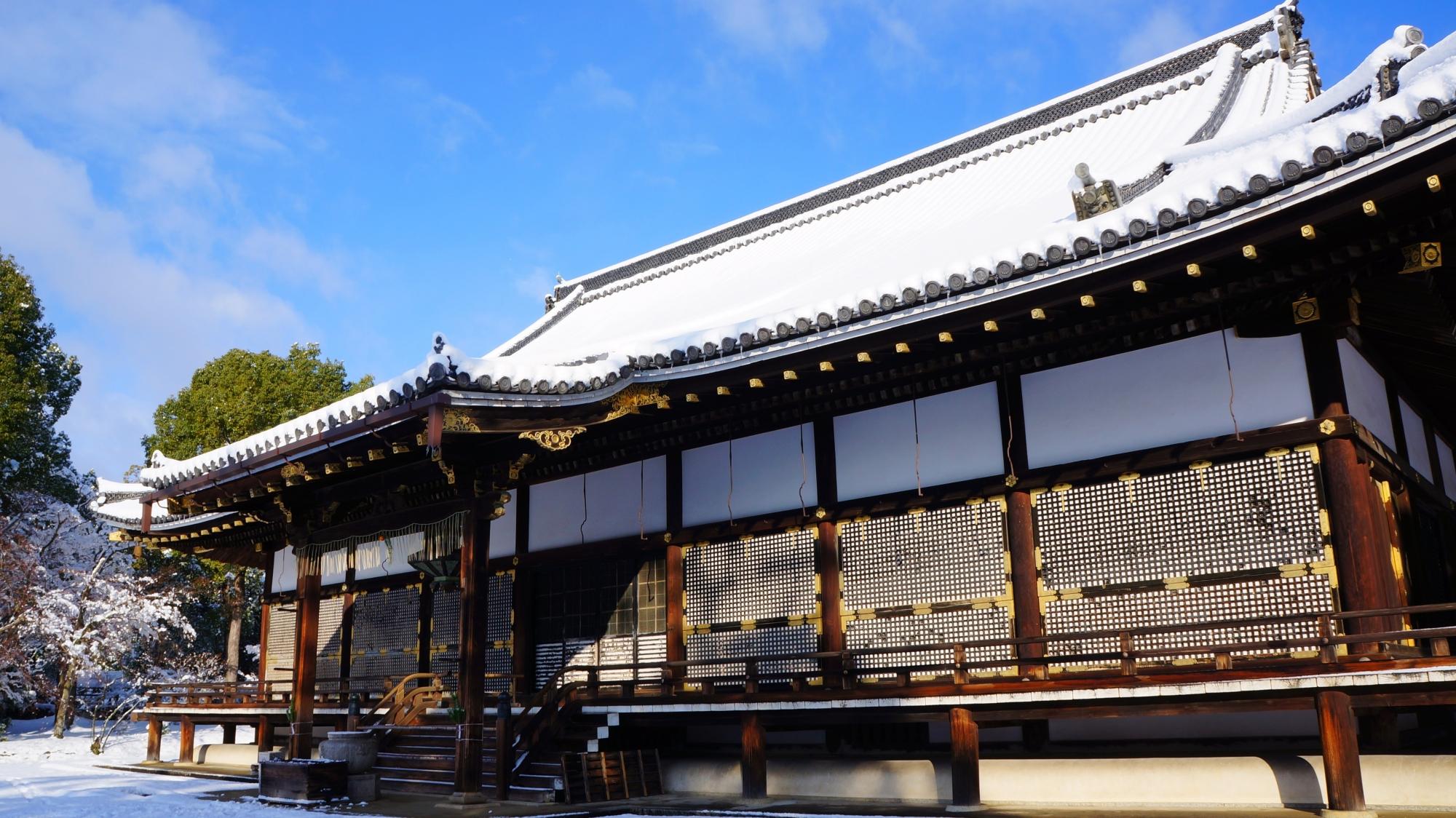 寝殿造が雪に似合う仁和寺の金堂