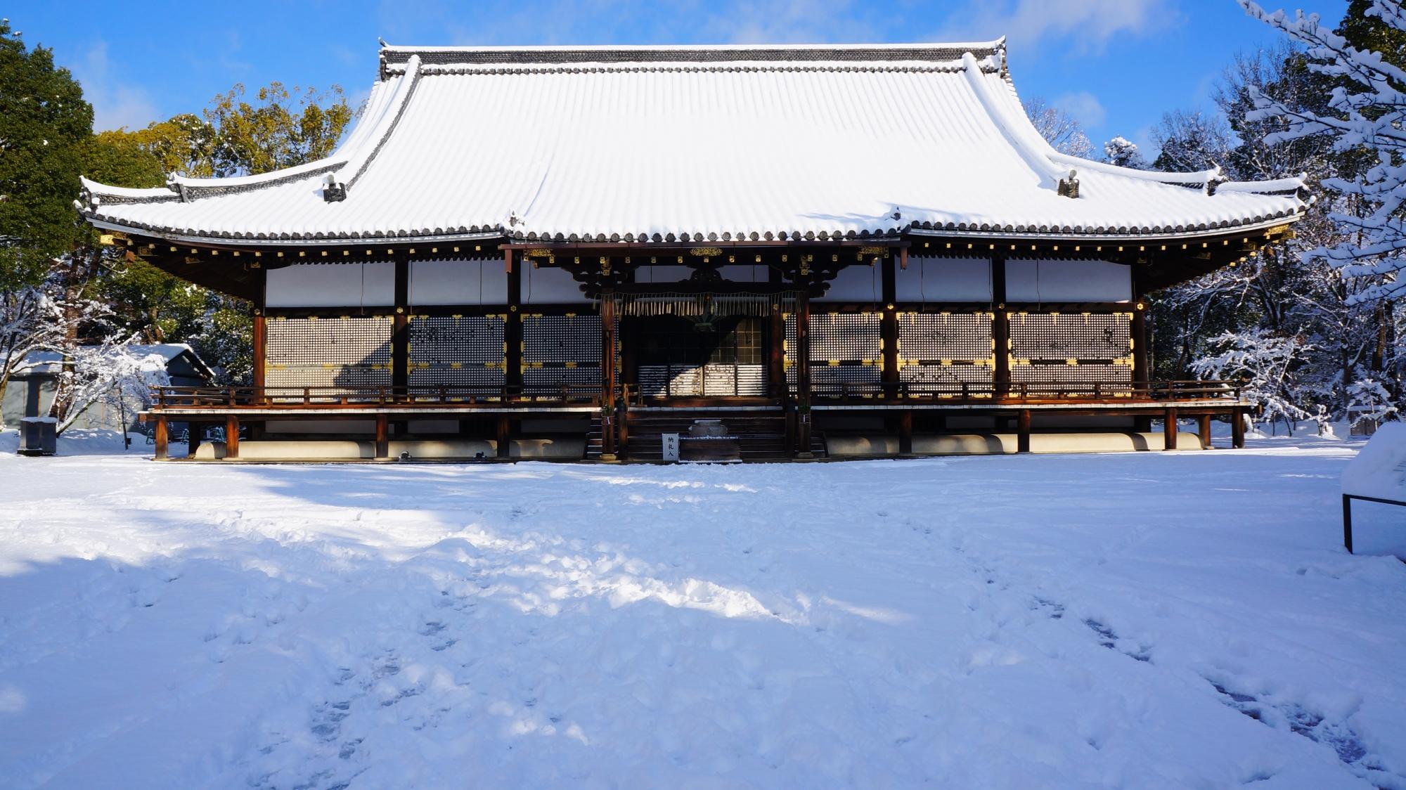 煌びやかで上品な雪の金堂