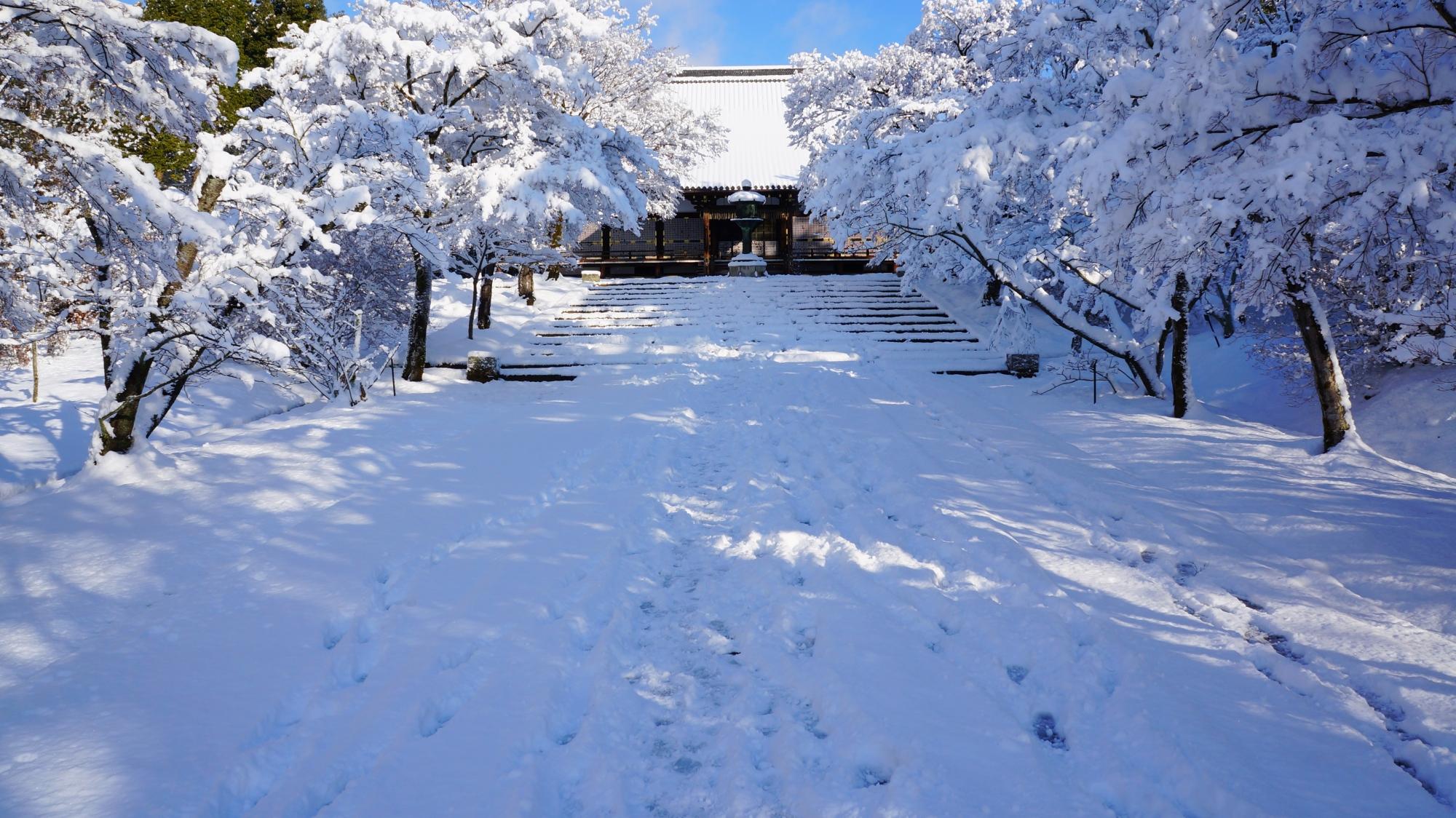仁和寺の金堂の雪景色