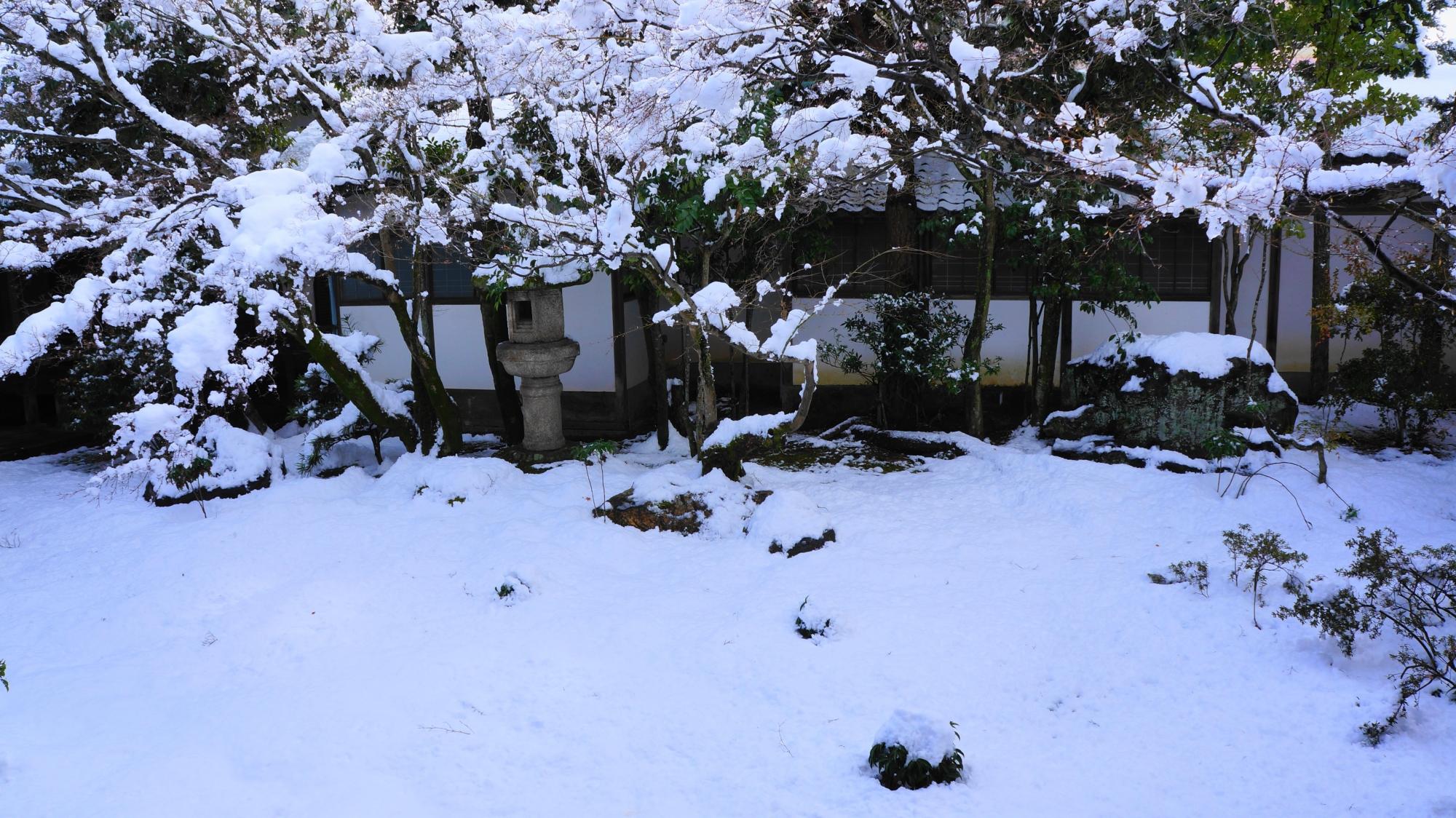 真っ白な雪に覆われた蟷螂や木々