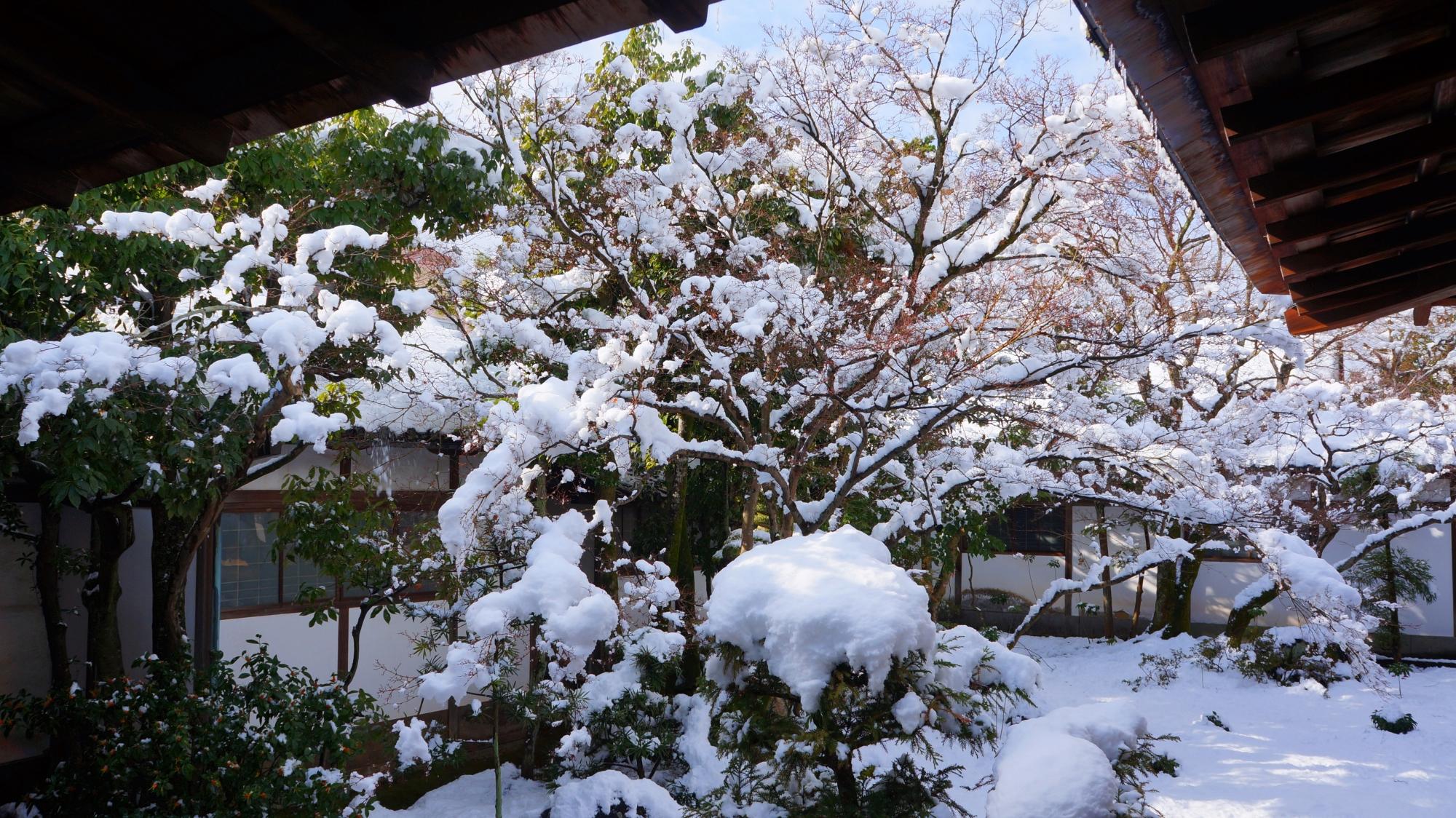 雪がてんこ盛りの黒書院庭園