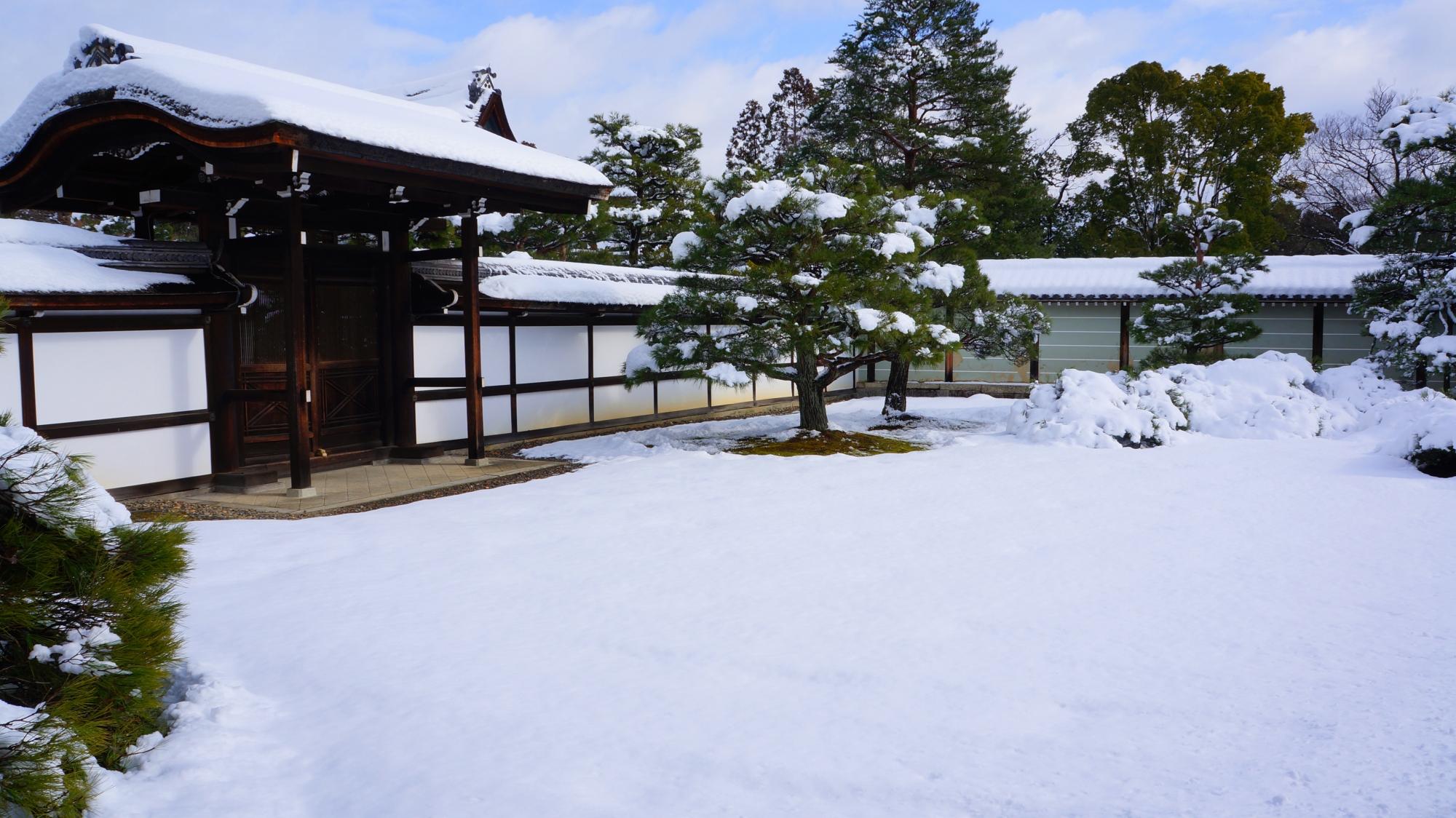 仁和寺の一面真っ白な雪に覆われた御殿玄関前