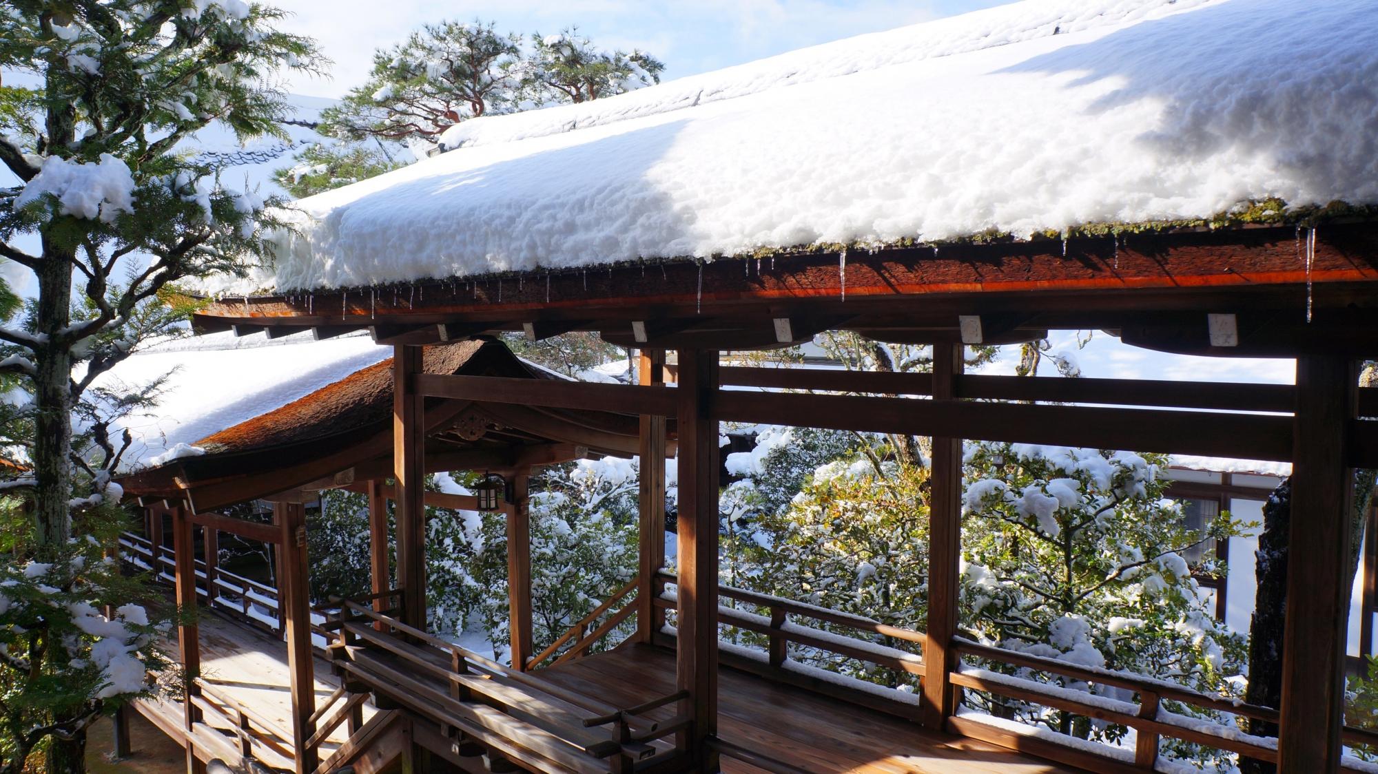 霊明殿に続く回廊の風情ある雪景色
