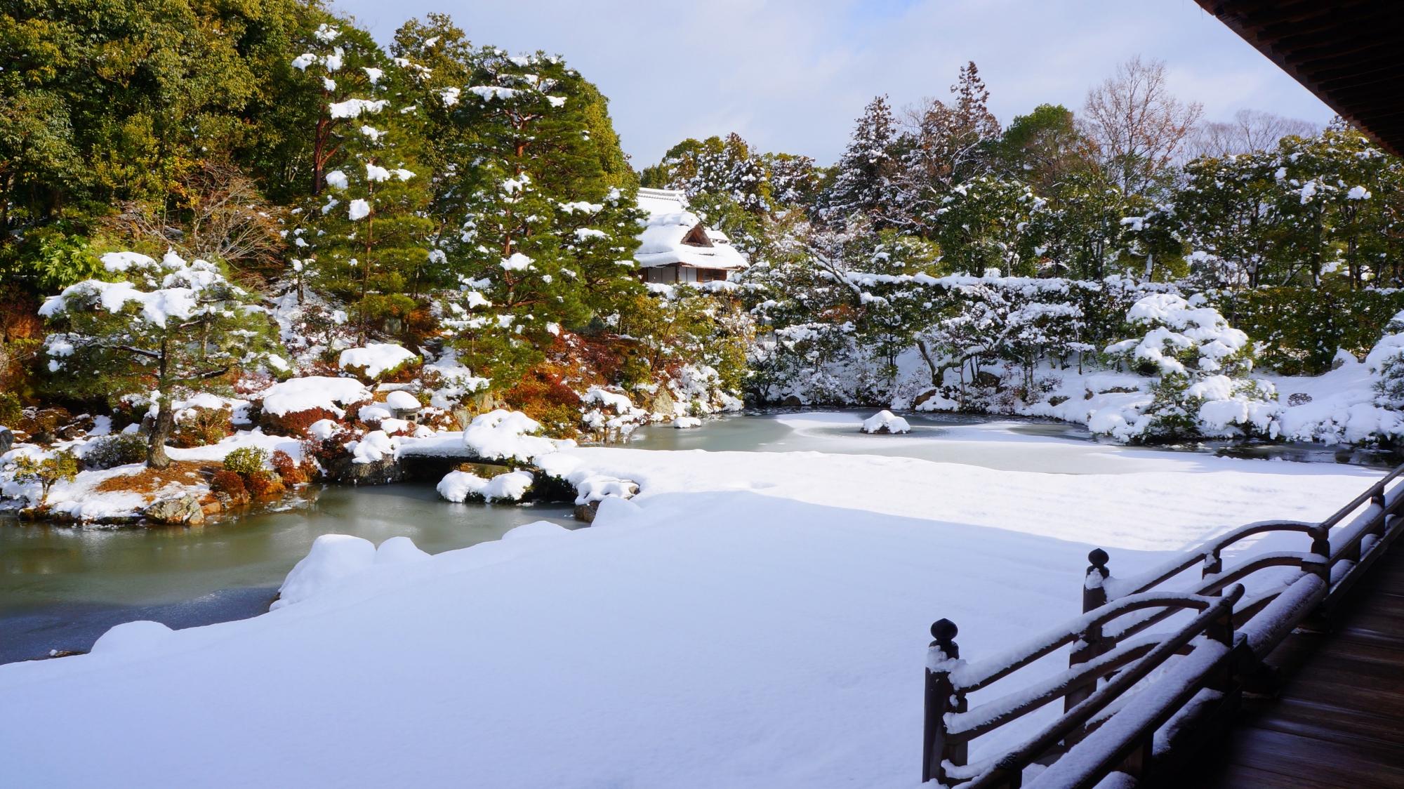 仁和寺の一面真っ白な雪で覆われた御殿北庭