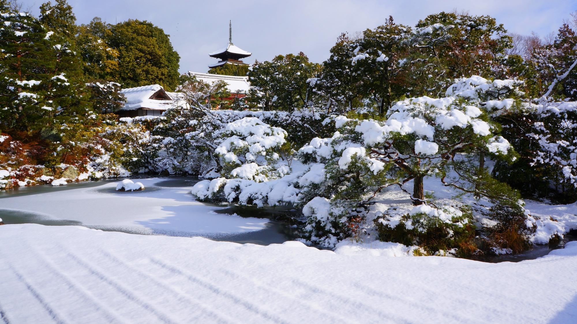 仁和寺の御殿北庭と五重塔の雪景色