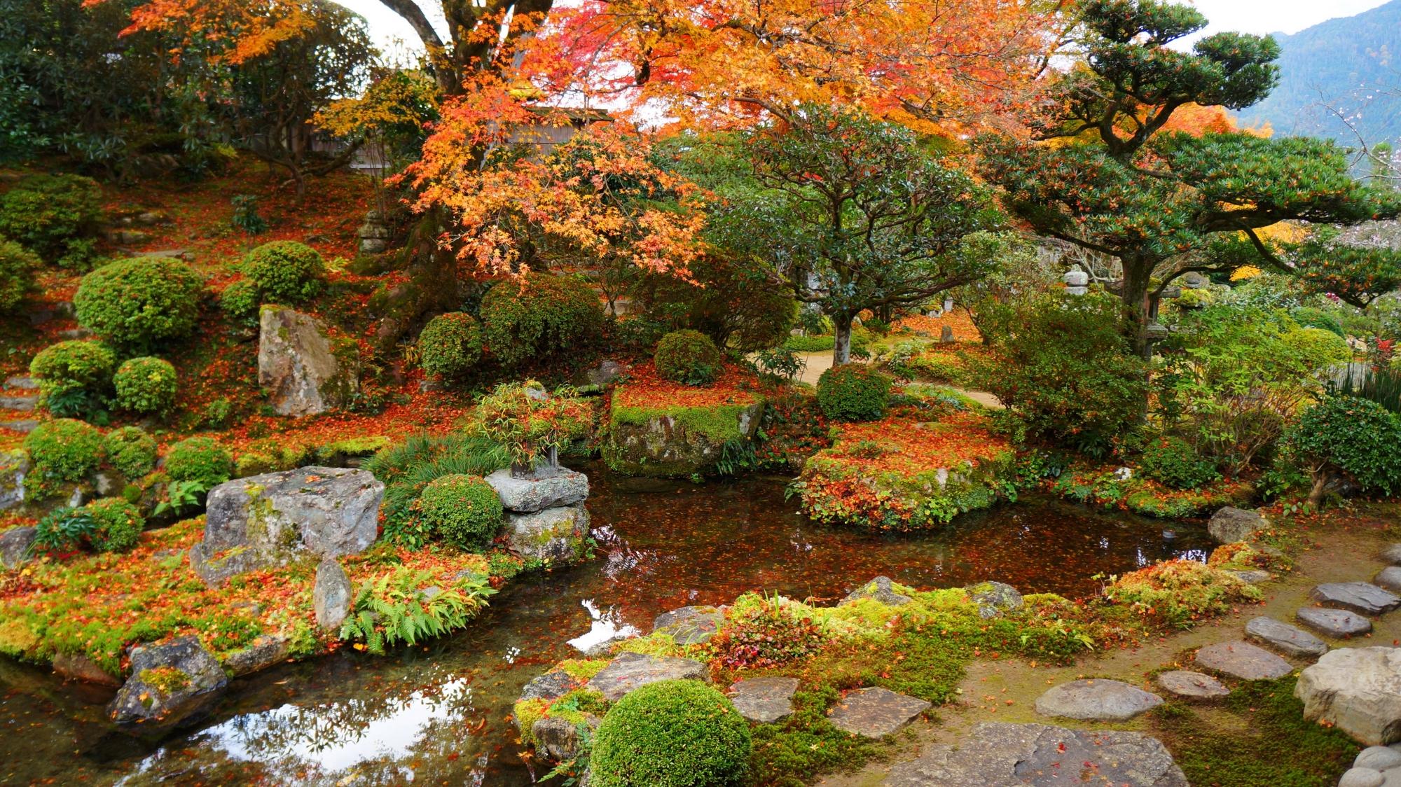 実光院の旧普賢院庭園(契心園)の紅葉