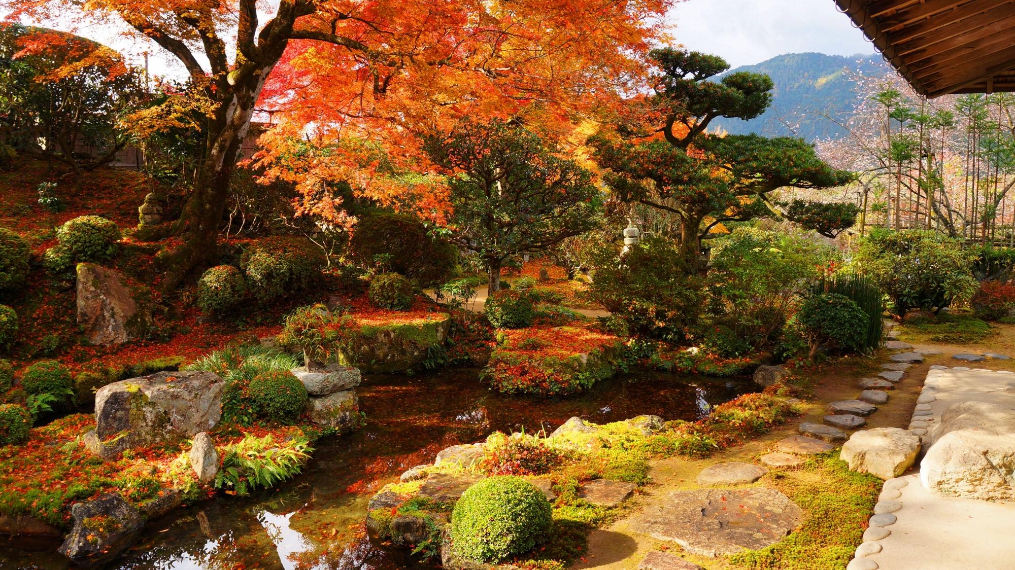 日が差すと雰囲気がだいぶ違ってくる実光院の紅葉