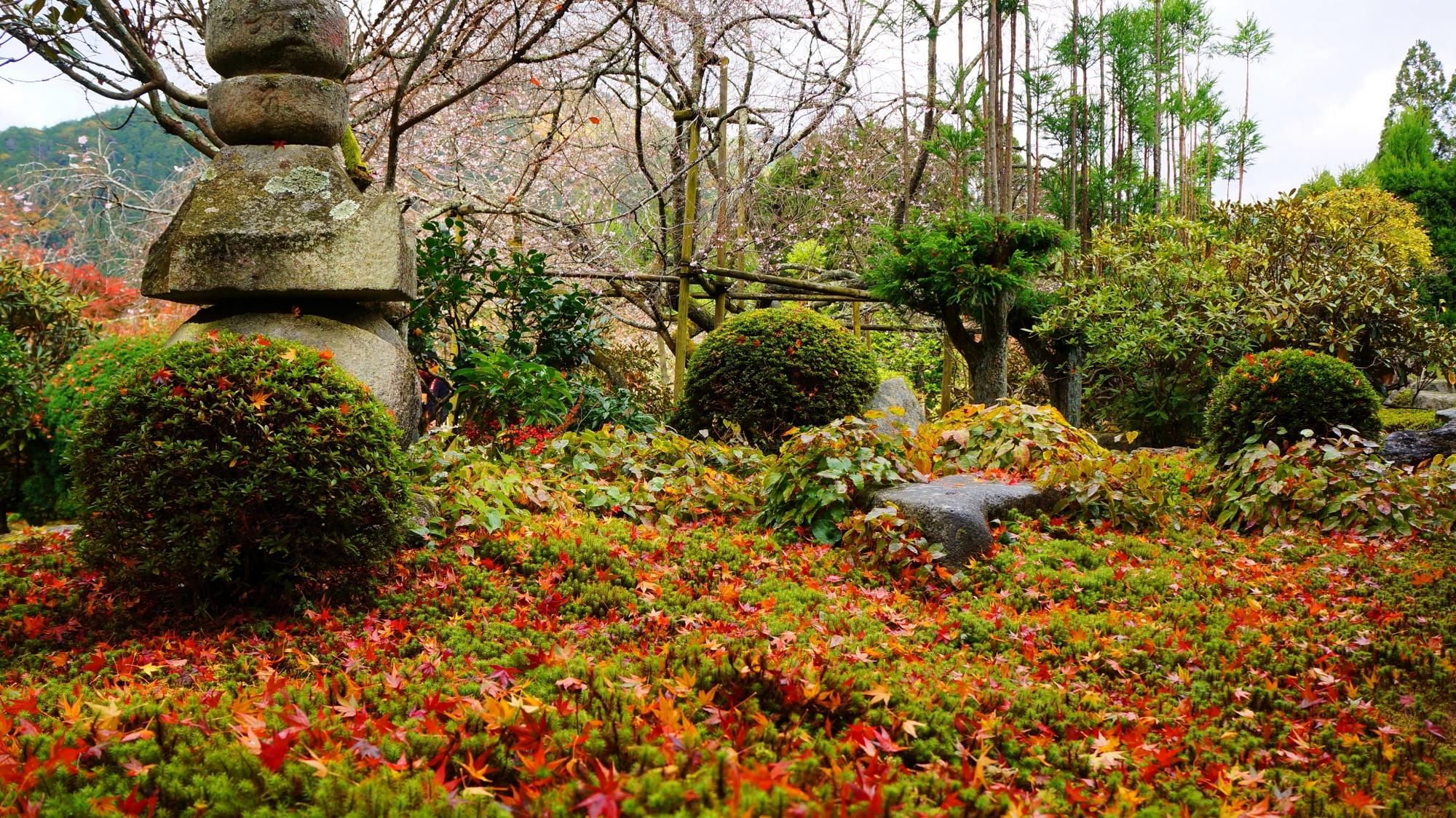 秋色に染まった緑の苔や刈り込み