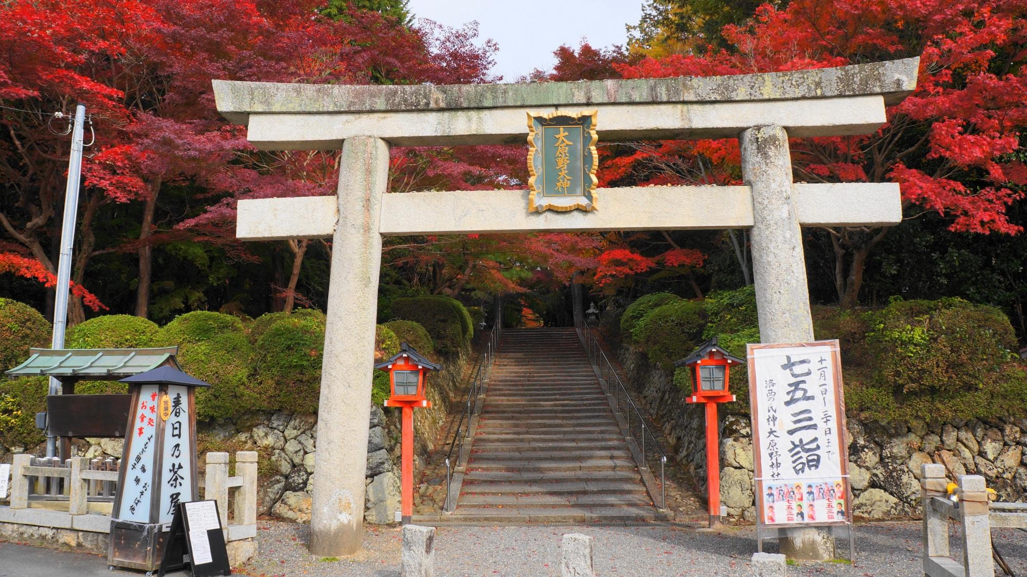 大原野神社の一ノ鳥居とお出迎えの鮮やかな紅葉