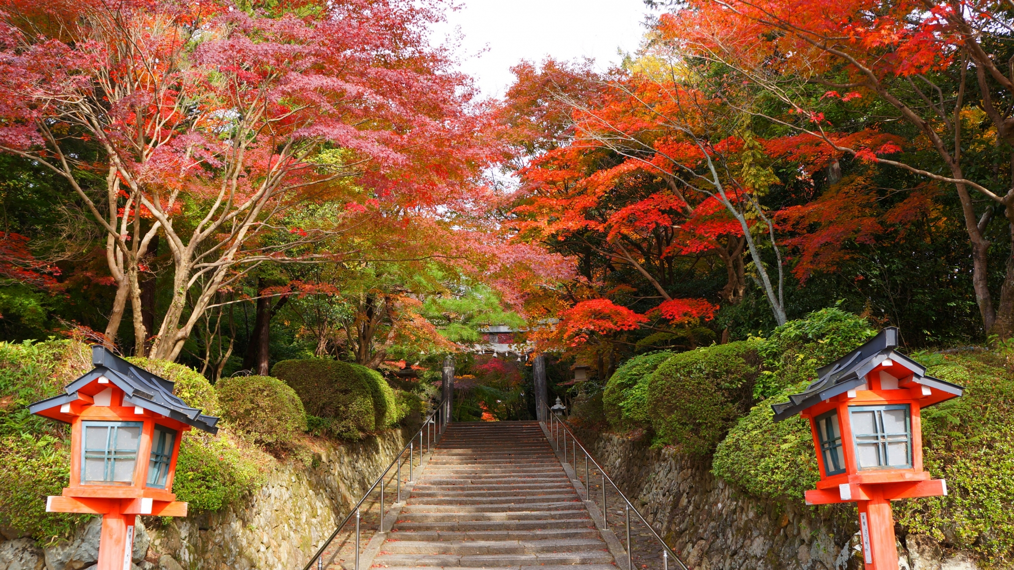 大原野神社の二ノ鳥居と紅葉が華やぐ石段