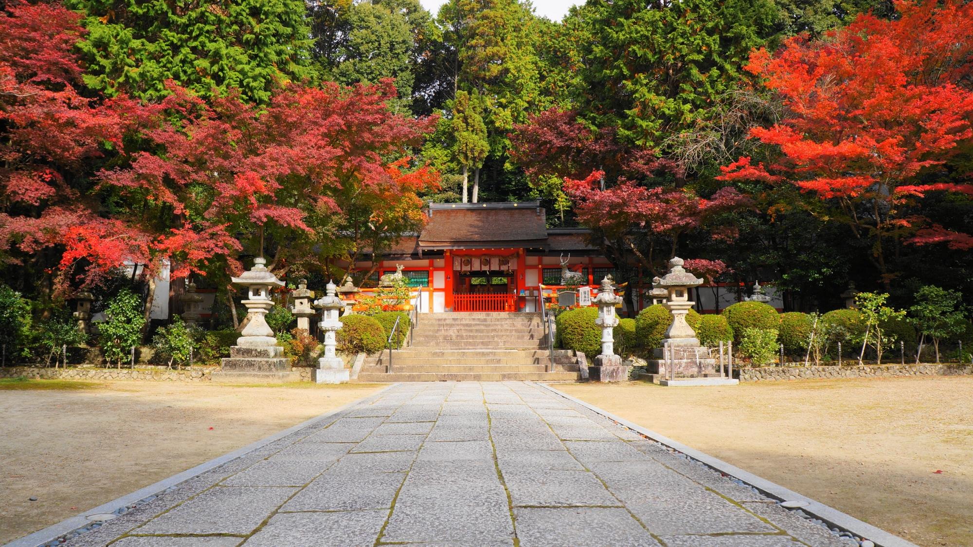 大原野神社の素晴らしい紅葉と情景
