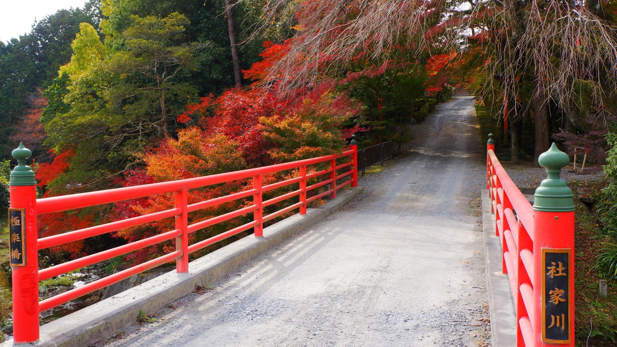 穴場のお寺である正法寺を染める圧倒的な紅葉