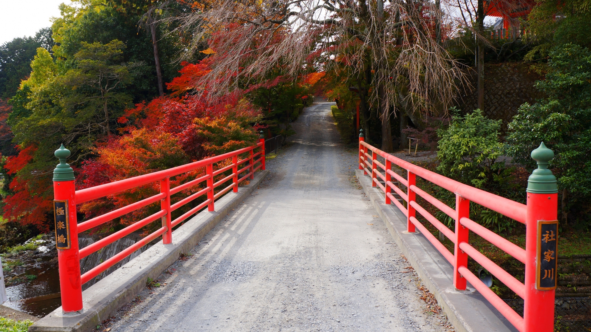 正法寺の境内へと続く極楽橋と鮮やかな紅葉