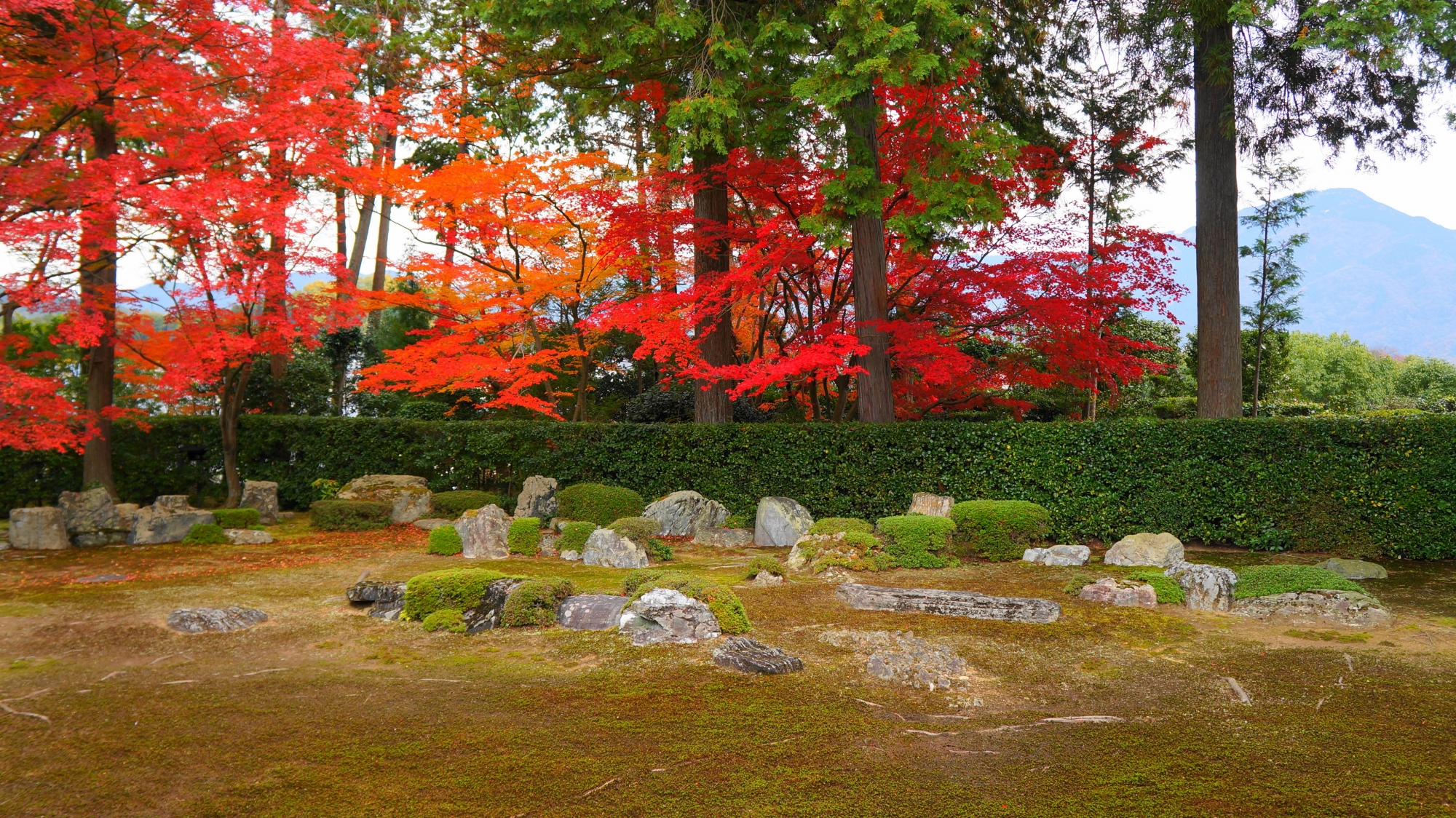 円通寺の比叡山借景庭園