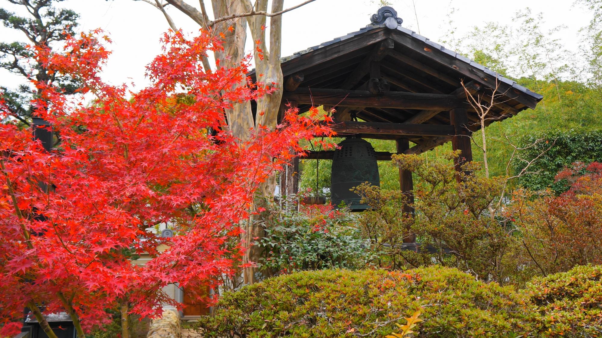 円通寺の鐘楼と紅葉