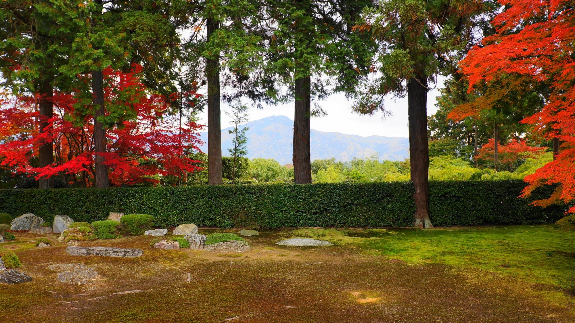 円通寺の赤色とオレンジ色の紅葉