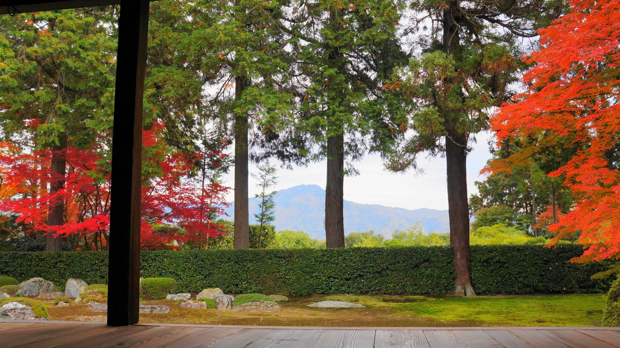 比叡山と円通寺の鮮やかな紅葉