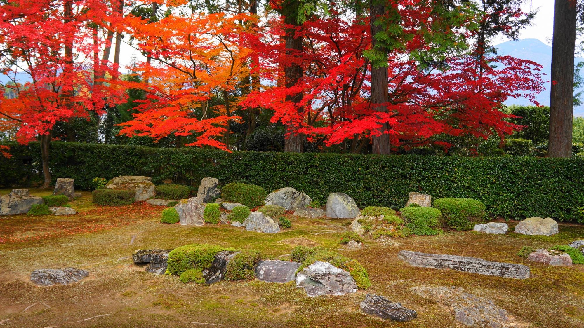 円通寺の苔の上に刈り込みや岩を配した枯山水庭園