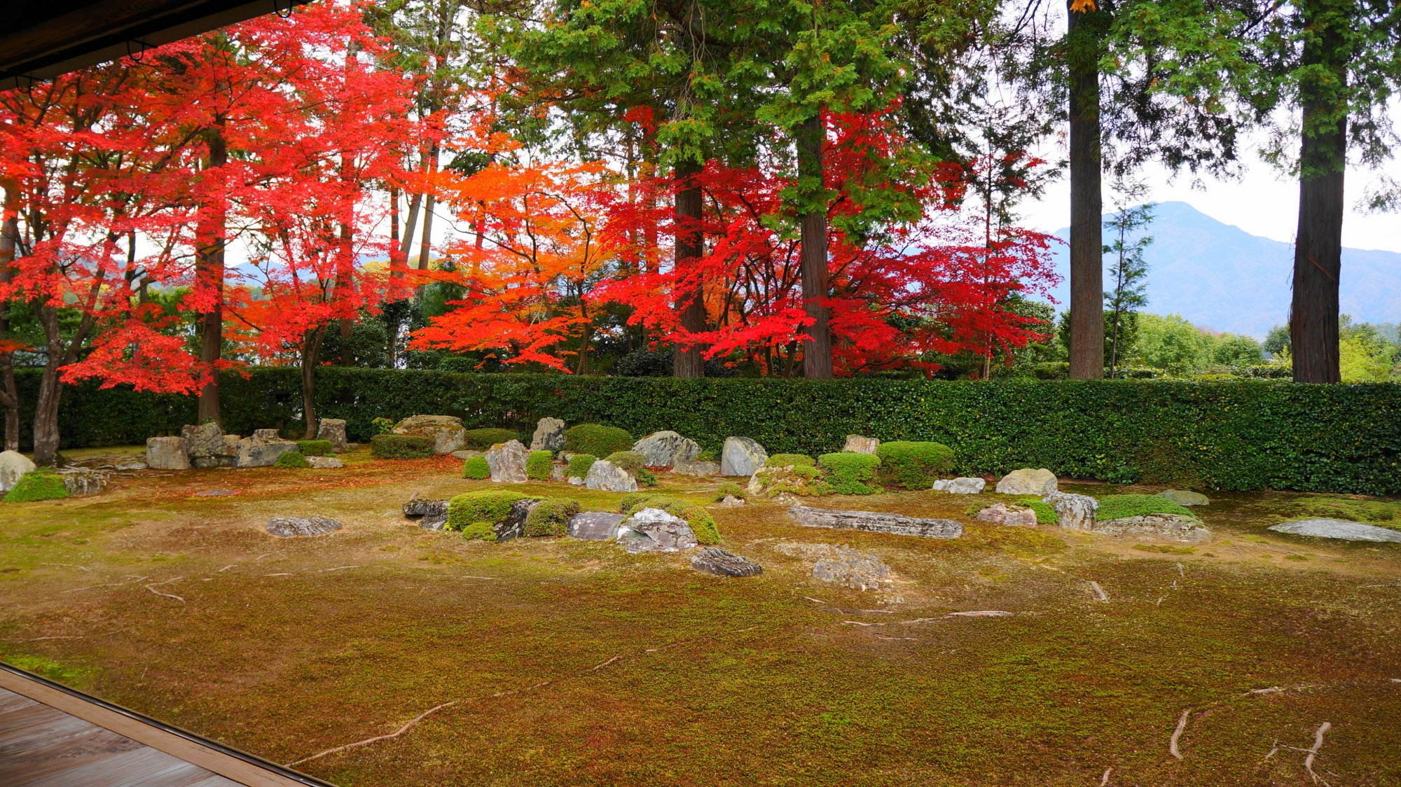 Brilliant autumn leaves of Entsu-ji Temple in Kyoto and Mt. Hiei-zan