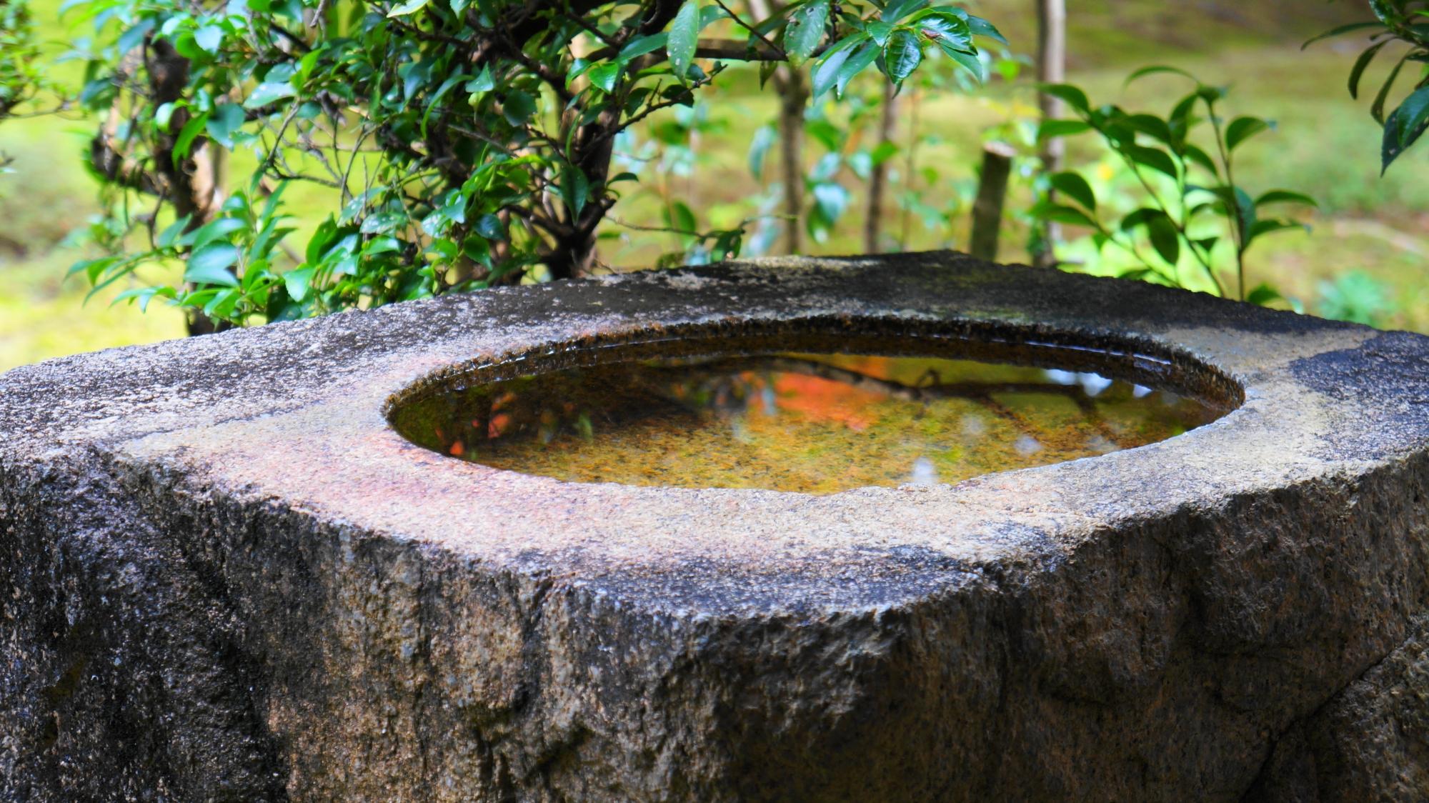 円通寺の紅葉の映る風情ある手水鉢