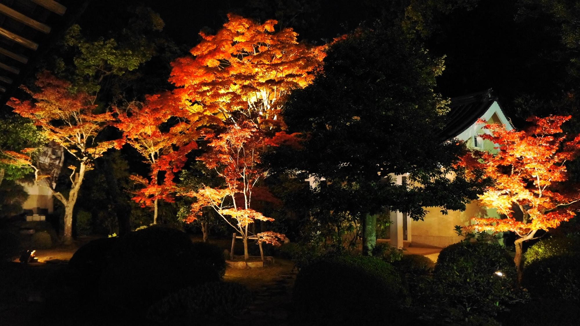随心院の奥書院前庭園の小町堂と紅葉のライトアップ