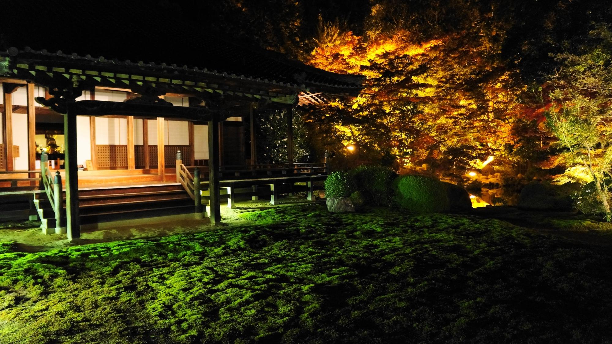 随心院の本堂前庭園と紅葉のライトアップ
