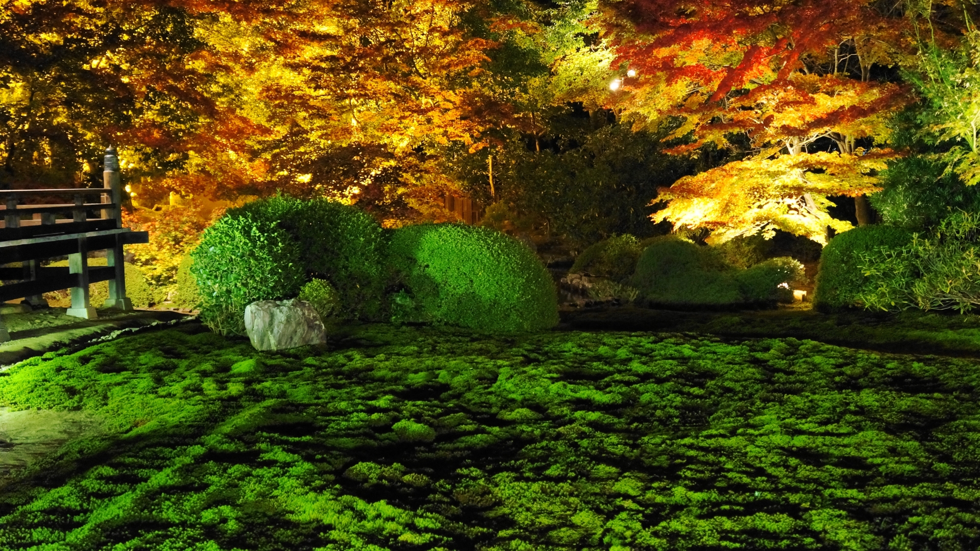 緑の苔と刈り込みを彩る艶やかな紅葉