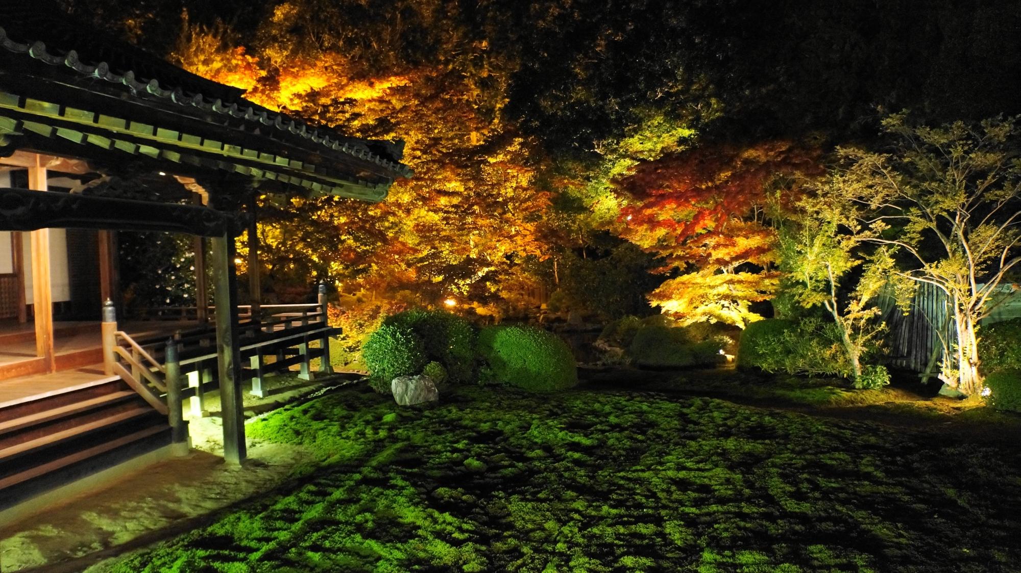 随心院の静かな境内を華やぐ趣きある紅葉と灯り