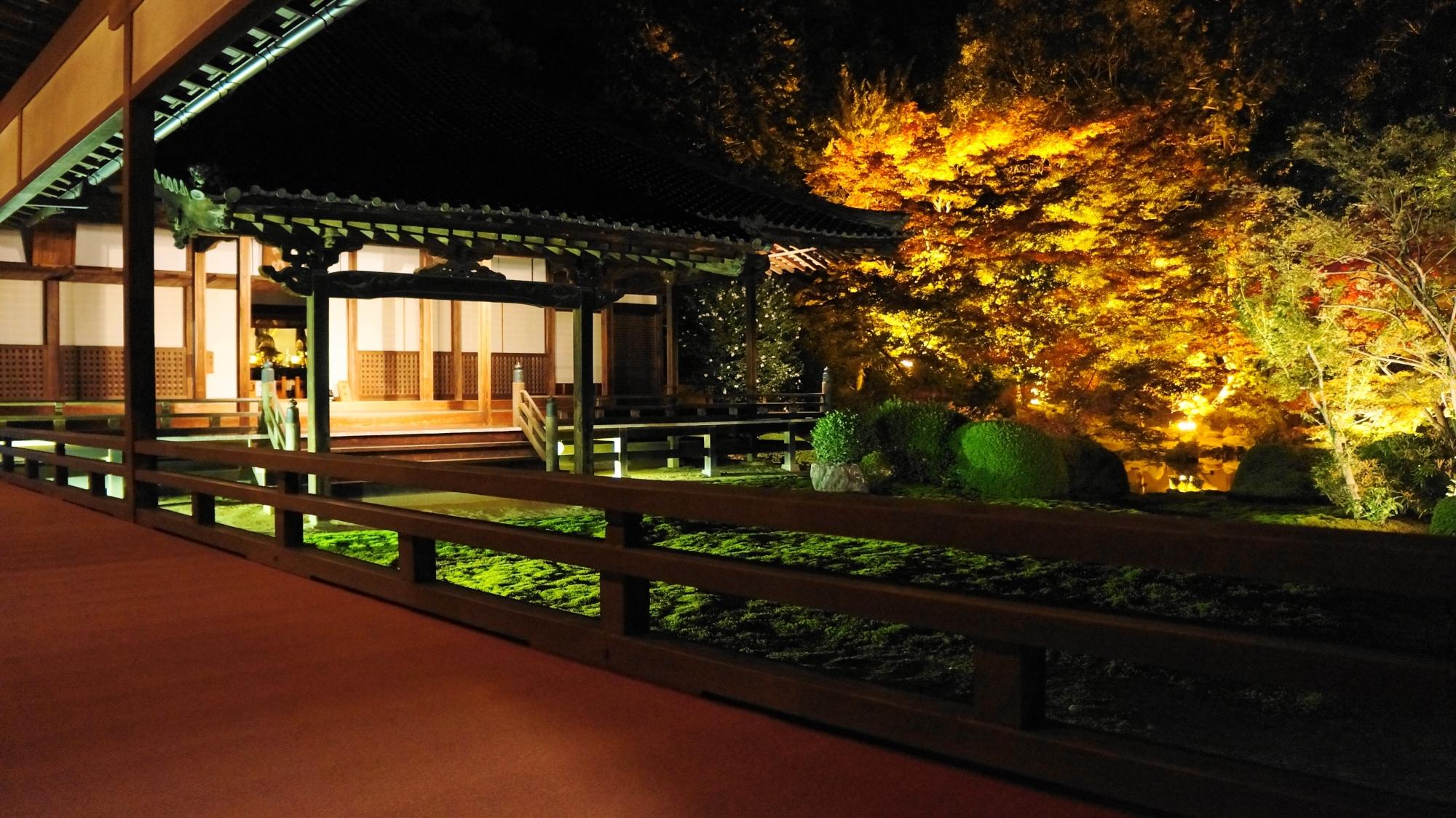 随心院の本堂とライトアップされた幽玄な紅葉