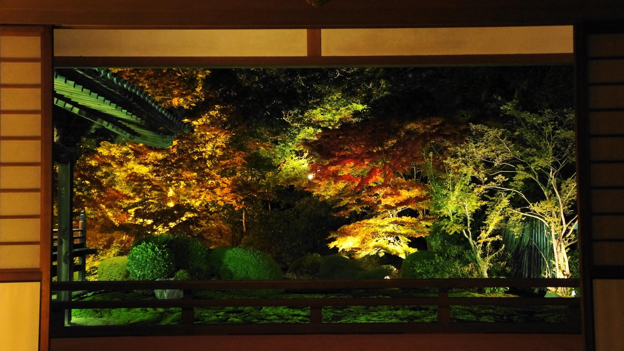 ライトアップされた額縁の紅葉の庭園