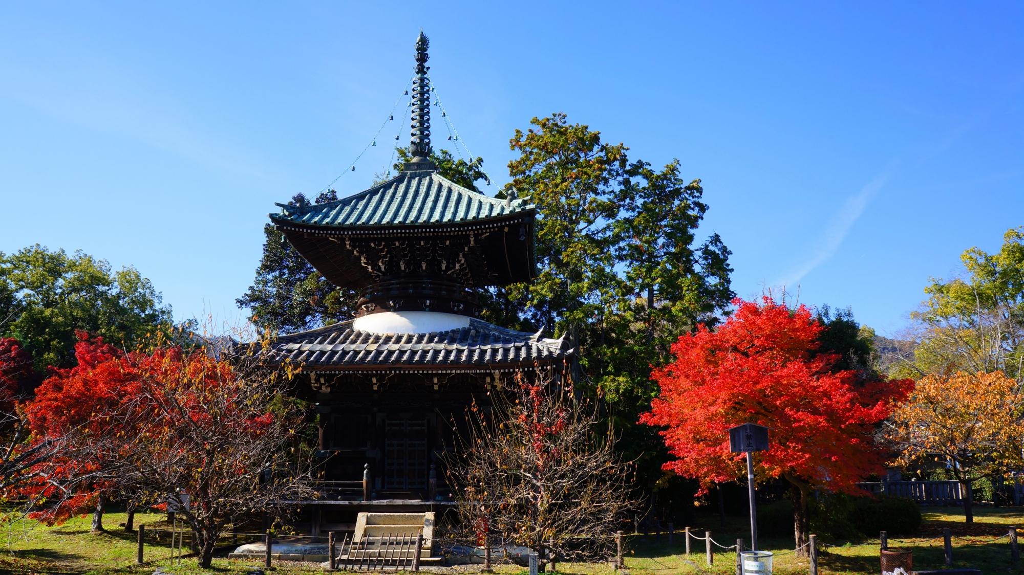 清涼寺の多宝塔と紅葉