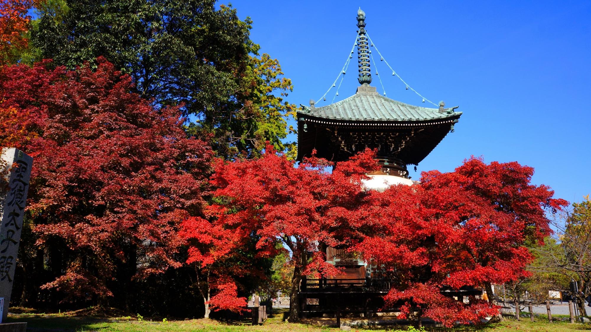 高画質 写真 清涼寺多宝塔 紅葉