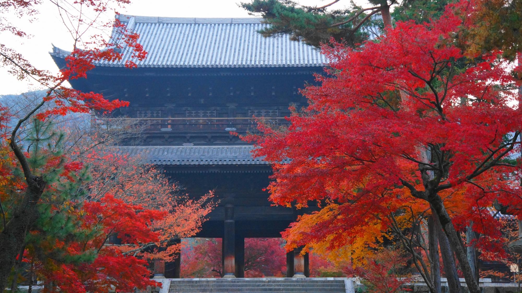 見事な秋色に染まった巨大な三門