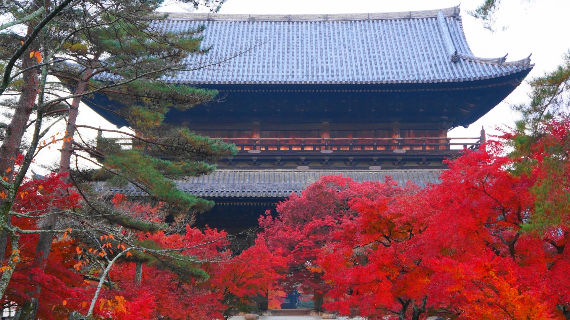 法堂側から眺めた南禅寺の三門と溢れる紅葉