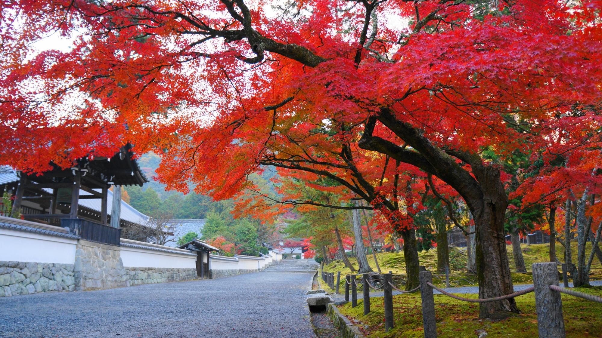 南禅寺の南禅僧堂前の紅葉