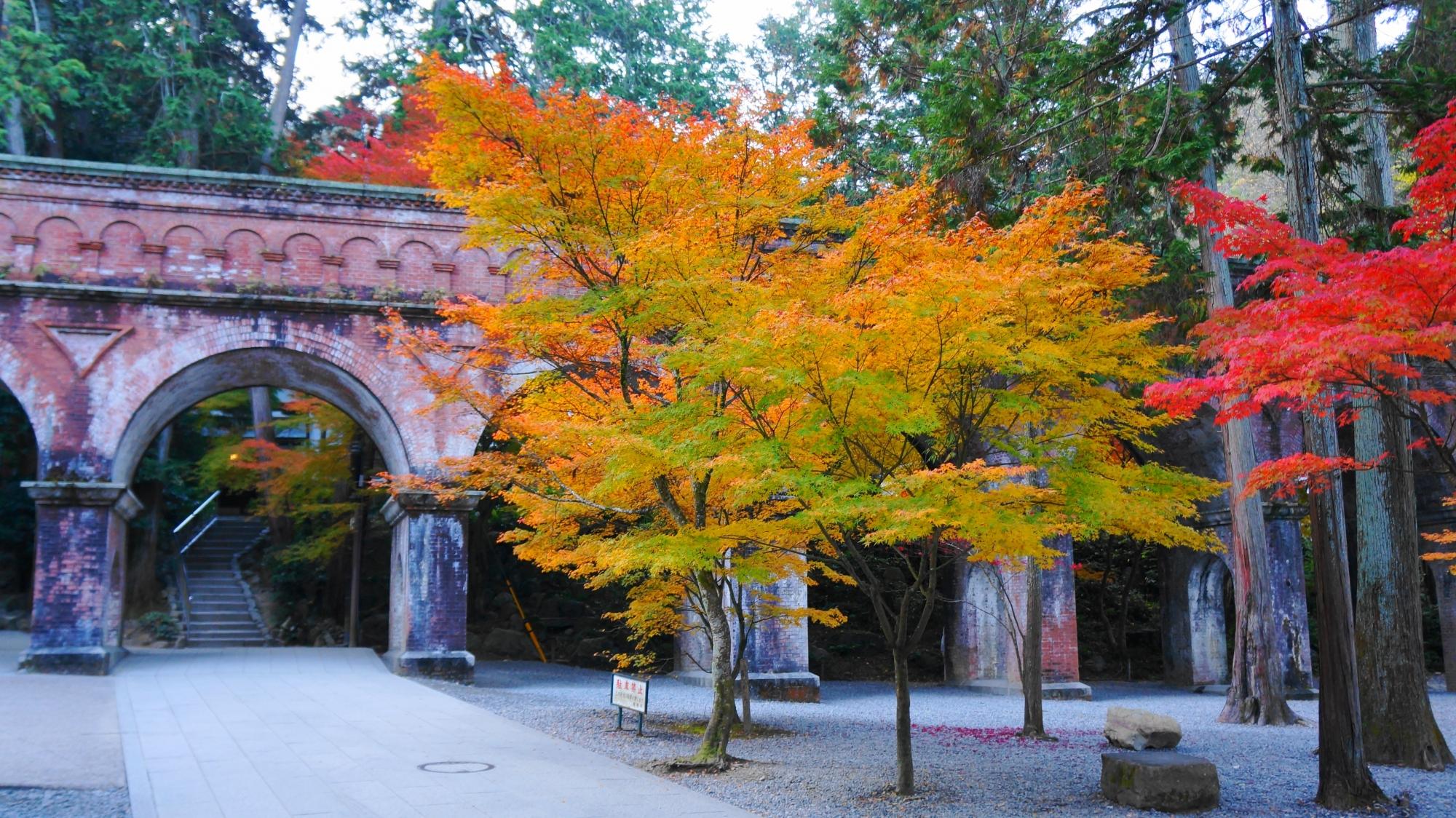 水路閣を華やぐ色とりどりの紅葉