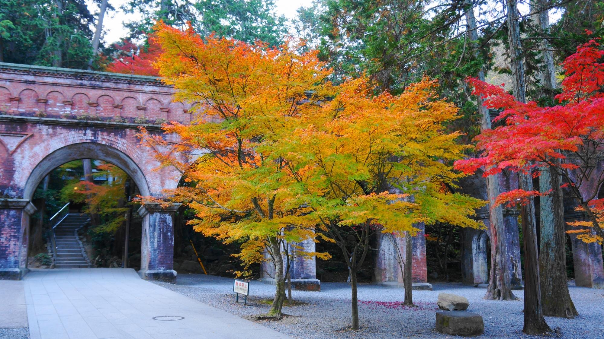 水路閣の素晴らしい紅葉とレトロな秋の情景