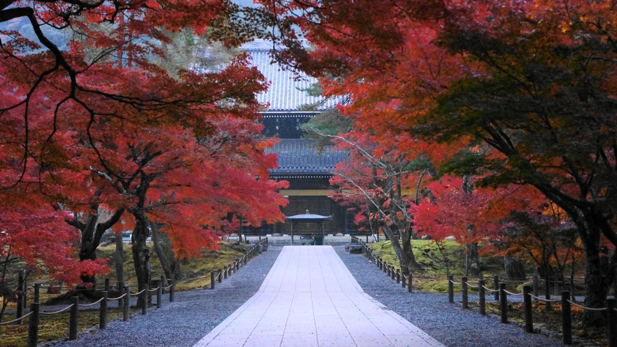 艶やかな紅葉の参道の奥に見える法堂