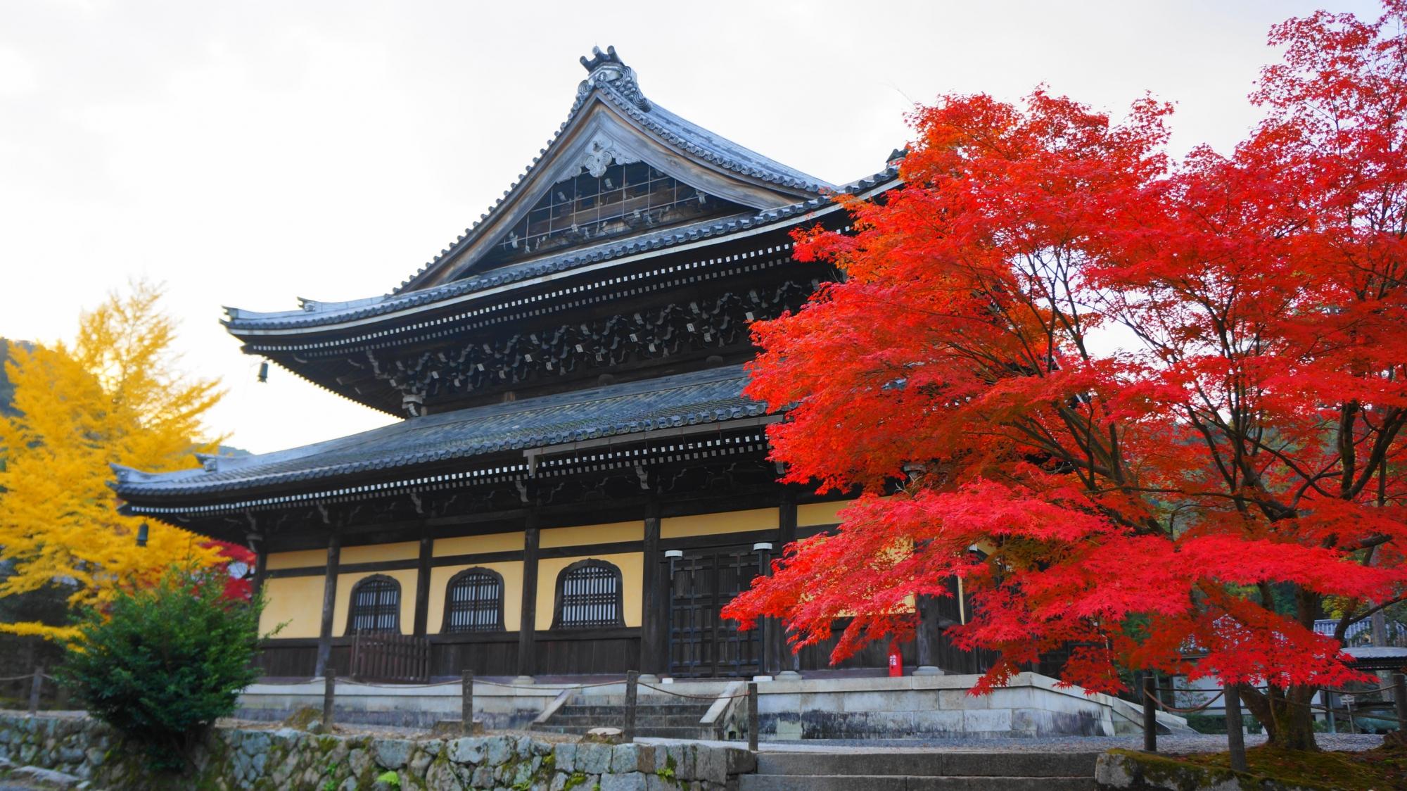 南禅寺の法堂を優雅に彩る見事に色づいた紅葉