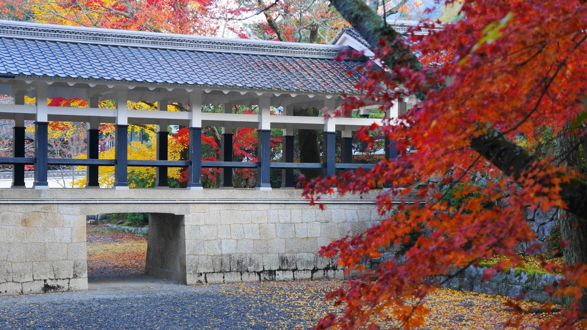 南禅寺の独特の回廊を染める鮮やかな紅葉や銀杏