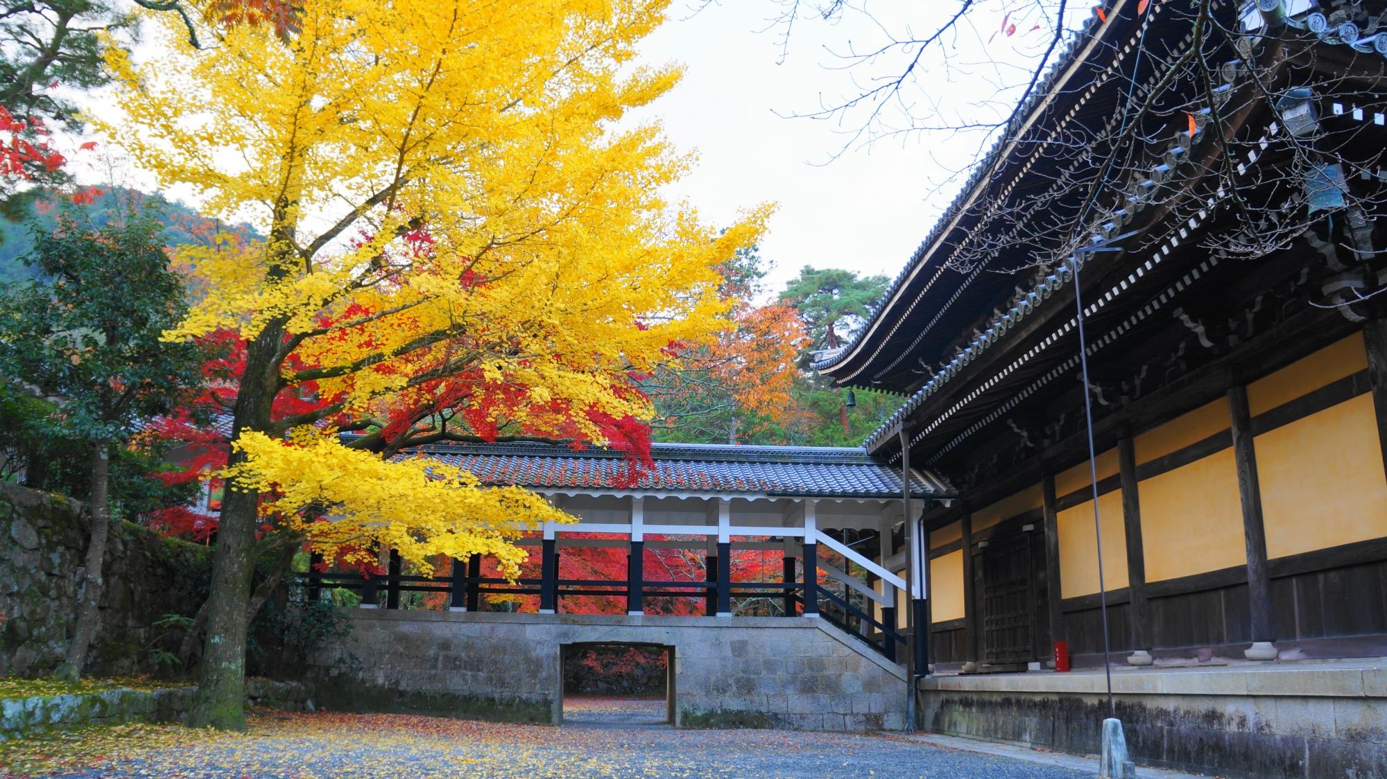 南禅寺独特の白黒の回廊と法堂を彩る華やかで多彩な秋色