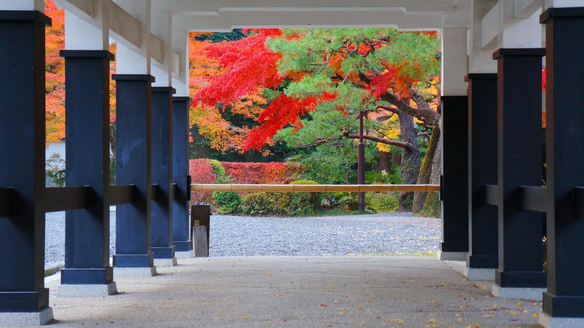 白と黒の独特の回廊を額縁とした南禅寺の多様な秋色
