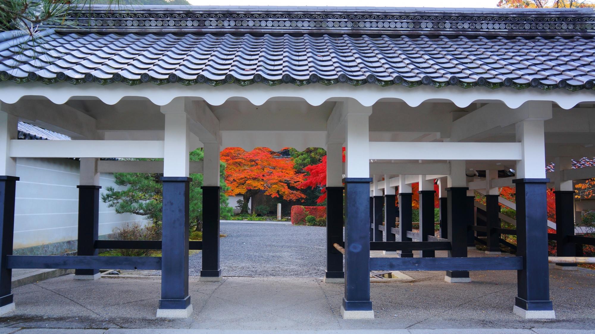 別の角度から眺めた回廊を額縁とした本坊前の鮮やかな紅葉