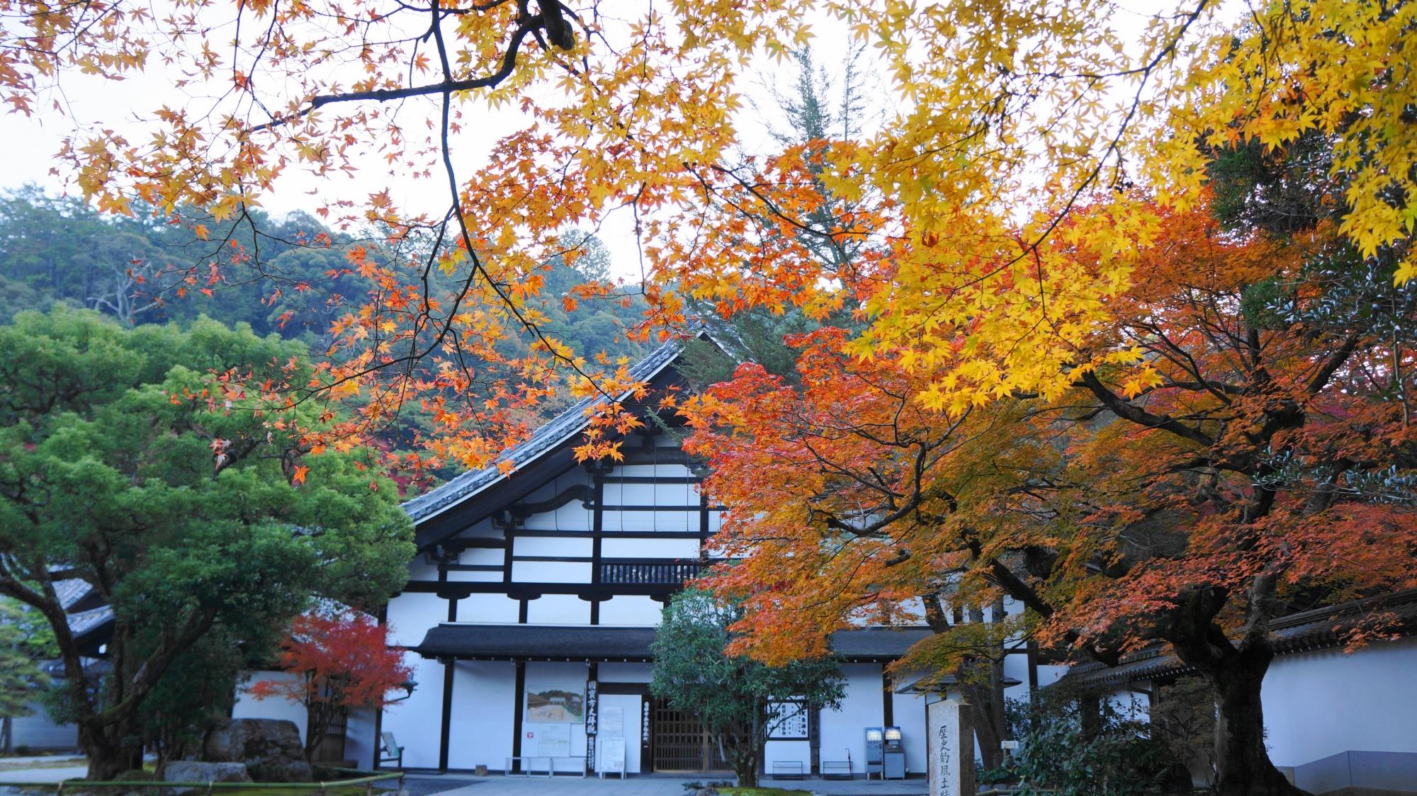 南禅寺の庫裡と華やかな紅葉
