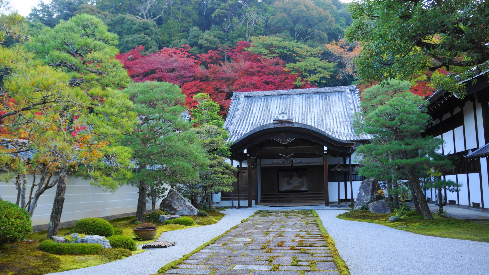 南禅寺の方丈と溢れ出す紅葉
