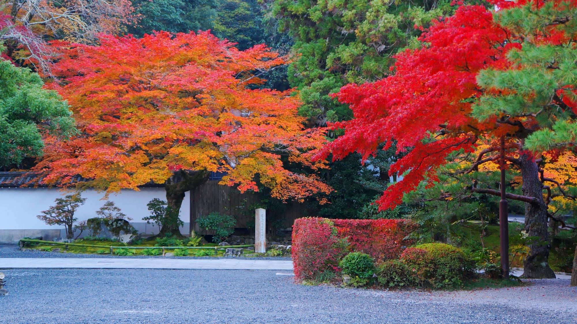 南禅寺の素晴らしすぎる紅葉と圧巻の秋の情景