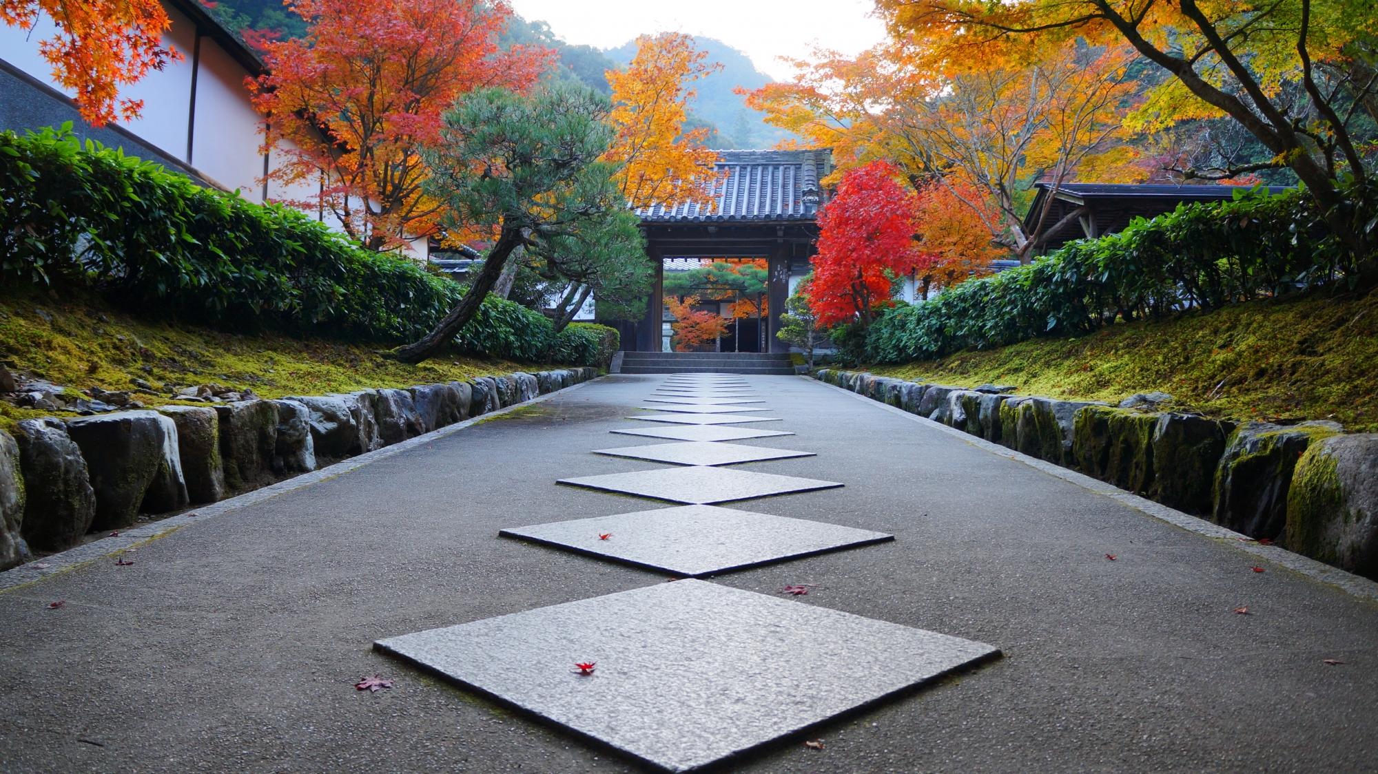 高徳庵の山門に続く紅葉に彩られた独特の石の参道