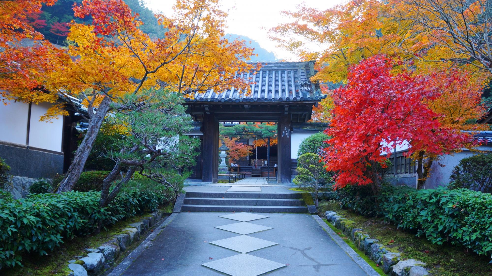 南禅寺の奥にひっそりと佇む最勝院の見事な秋色の光景